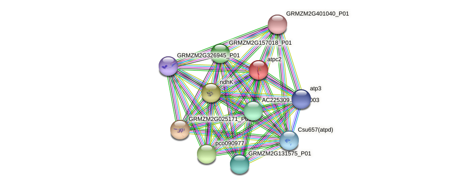 GRMZM2G048907_P01 protein (Zea mays) - STRING interaction network