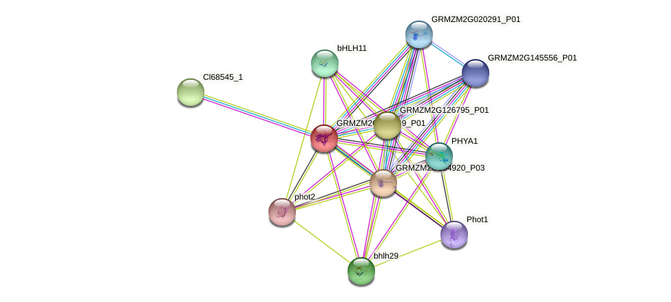 GRMZM2G049549_P01 protein (Zea mays) - STRING interaction network