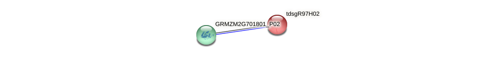 GRMZM2G050583_P01 protein (Zea mays) - STRING interaction network