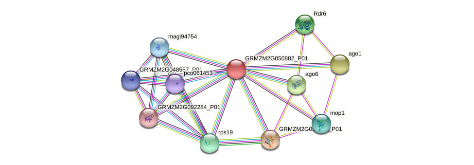 GRMZM2G050882_P01 protein (Zea mays) - STRING interaction network