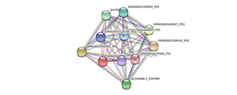GRMZM2G051790_P03 protein (Zea mays) - STRING interaction network