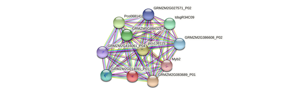 gpm911 protein (Zea mays) - STRING interaction network
