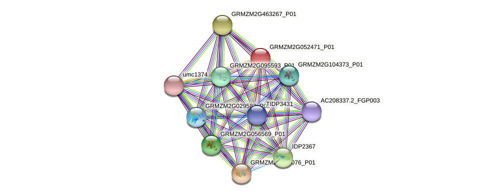 GRMZM2G052471_P01 protein (Zea mays) - STRING interaction network