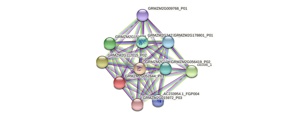 GRMZM2G052644_P01 protein (Zea mays) - STRING interaction network