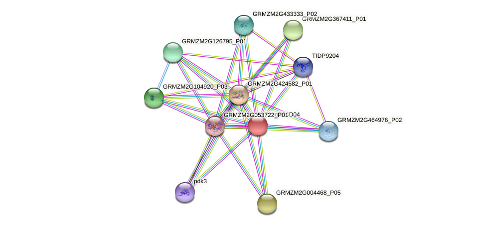 GRMZM2G052948_P02 protein (Zea mays) - STRING interaction network