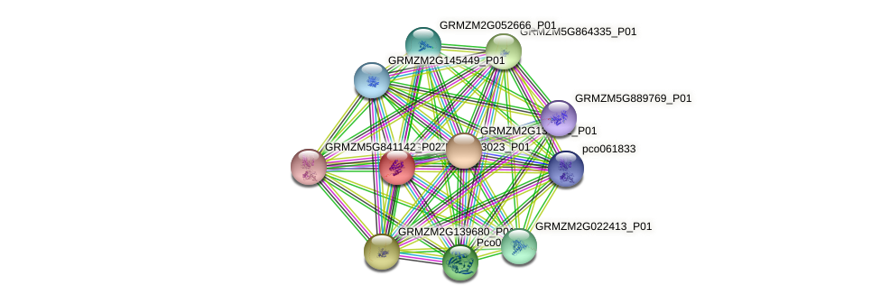 GRMZM2G053023_P01 protein (Zea mays) - STRING interaction network