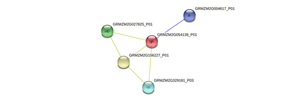 Zm.28240 protein (Zea mays) - STRING interaction network