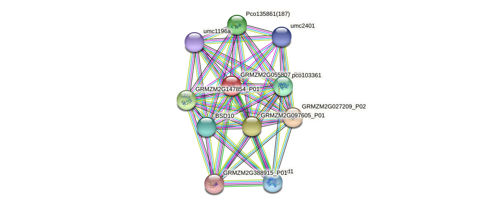 Zm.150586 protein (Zea mays) - STRING interaction network