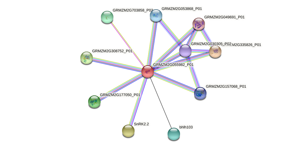 Zm.152977 protein (Zea mays) - STRING interaction network