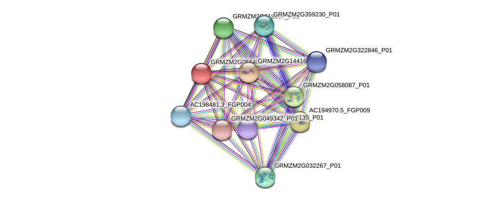 GRMZM2G056403_P02 protein (Zea mays) - STRING interaction network