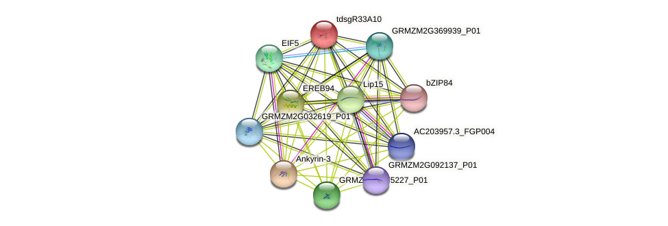 Zm.21315 protein (Zea mays) - STRING interaction network
