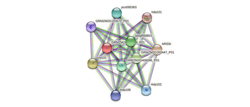 GRMZM2G056598_P01 protein (Zea mays) - STRING interaction network