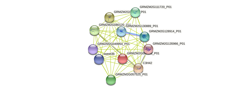TIDP3082 protein (Zea mays) - STRING interaction network