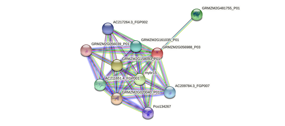 IDP333 protein (Zea mays) - STRING interaction network