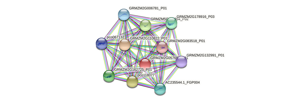 GRMZM2G057652_P01 protein (Zea mays) - STRING interaction network
