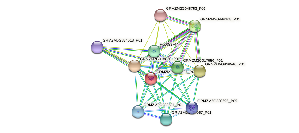GRMZM2G058227_P01 protein (Zea mays) - STRING interaction network