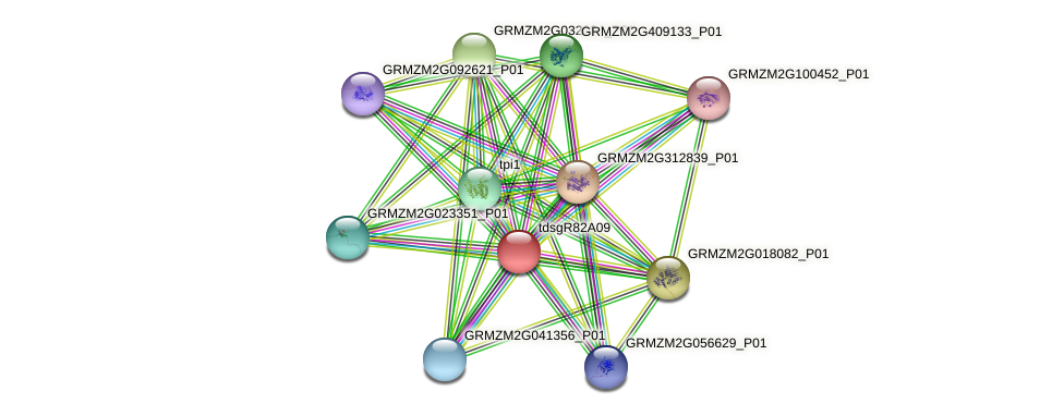 GRMZM2G058340_P01 protein (Zea mays) - STRING interaction network
