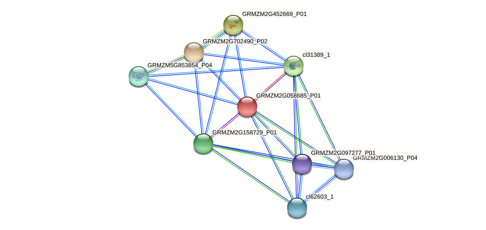 GRMZM2G058685_P01 protein (Zea mays) - STRING interaction network