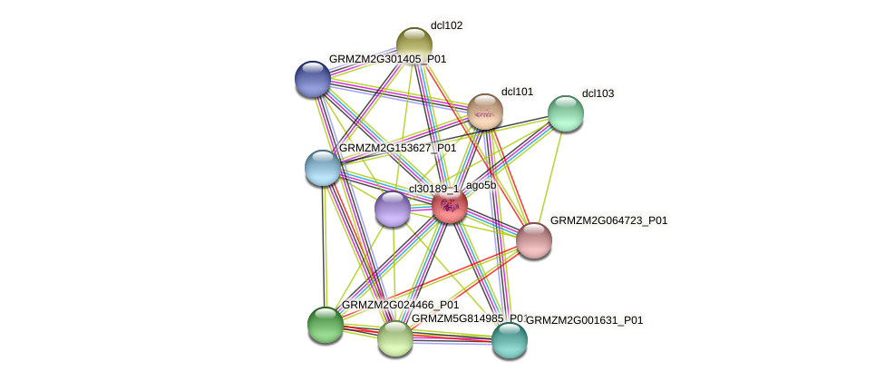 GRMZM2G059033_P01 protein (Zea mays) - STRING interaction network