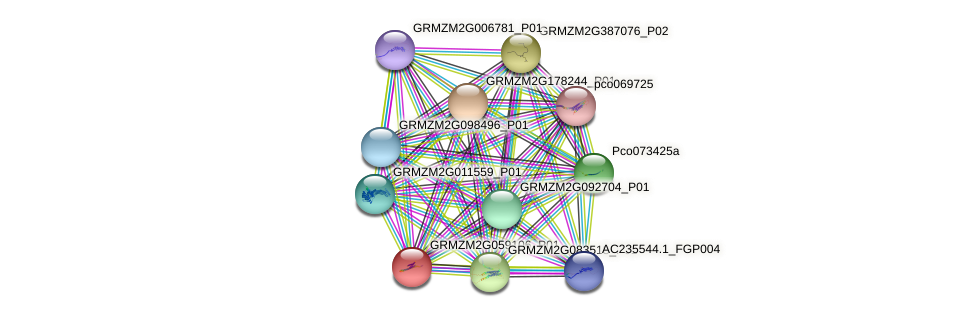 GRMZM2G059106_P01 protein (Zea mays) - STRING interaction network