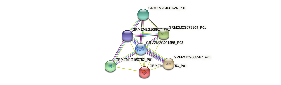 GRMZM2G059753_P01 protein (Zea mays) - STRING interaction network