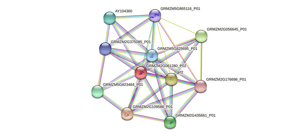 GRMZM2G061280_P02 protein (Zea mays) - STRING interaction network