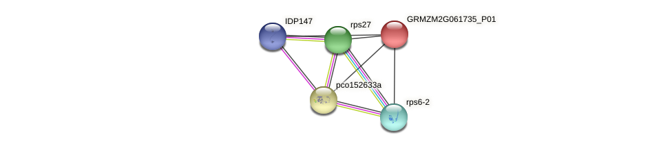 GRMZM2G061735_P01 protein (Zea mays) - STRING interaction network