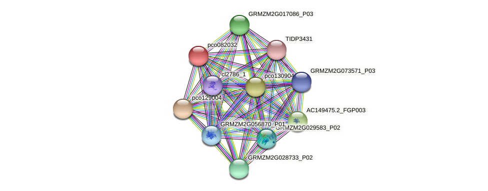 pco082032 protein (Zea mays) - STRING interaction network