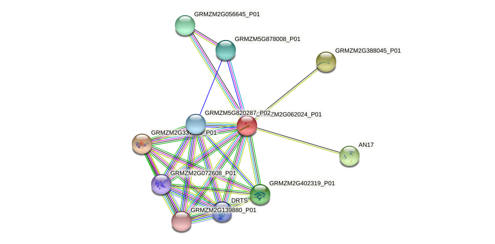 Zm.103727 protein (Zea mays) - STRING interaction network