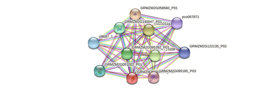 GRMZM2G062394_P01 protein (Zea mays) - STRING interaction network