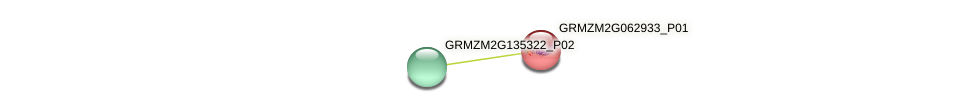 GRMZM2G062933_P01 protein (Zea mays) - STRING interaction network