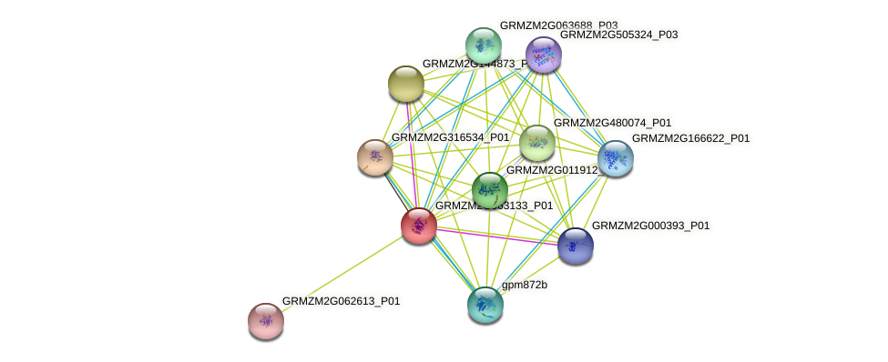 GRMZM2G063133_P01 protein (Zea mays) - STRING interaction network