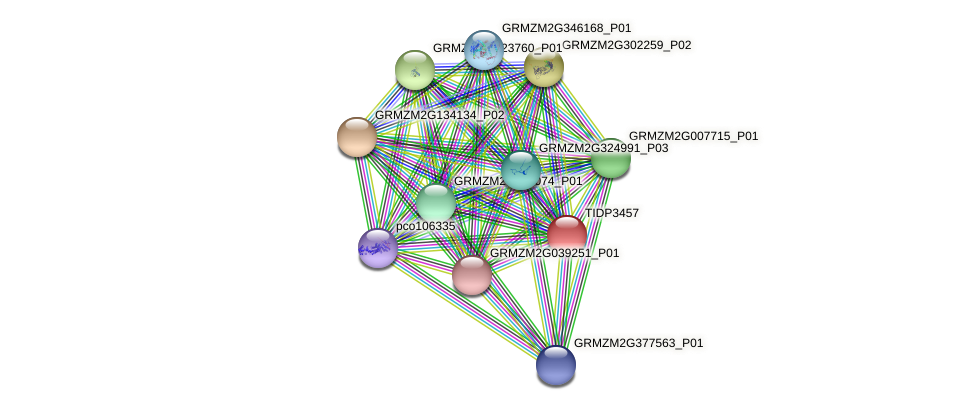 TIDP3457 protein (Zea mays) - STRING interaction network