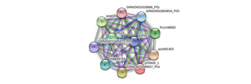 cl10949_1 protein (Zea mays) - STRING interaction network