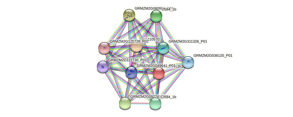 GRMZM2G065012_P02 protein (Zea mays) - STRING interaction network
