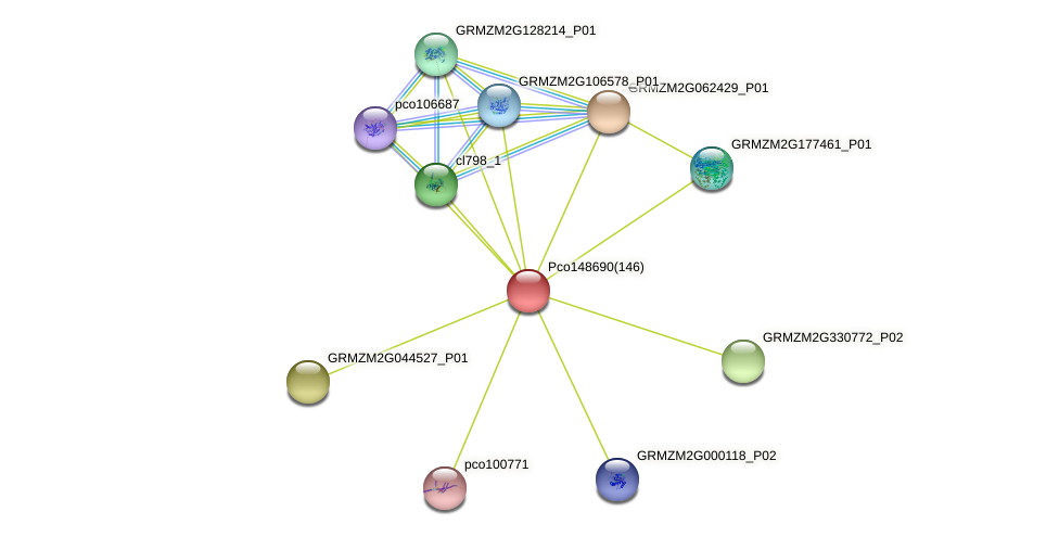 GRMZM2G065105_P01 protein (Zea mays) - STRING interaction network
