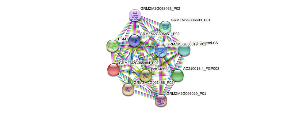 Zm.94615 protein (Zea mays) - STRING interaction network