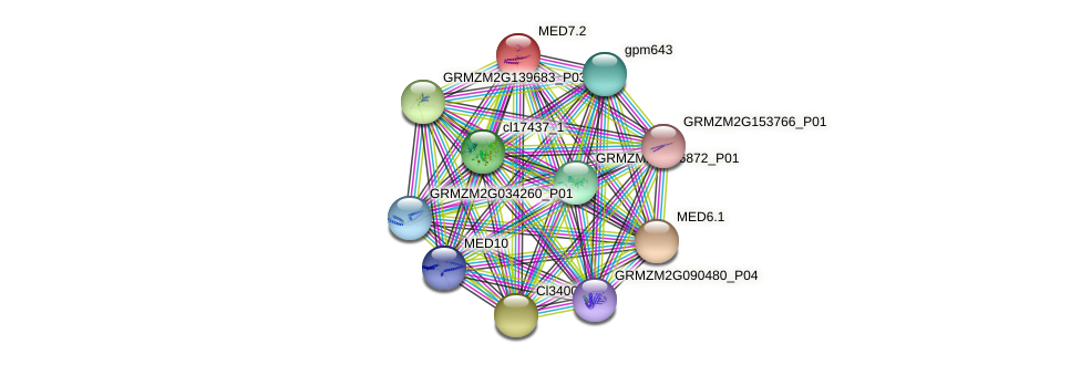 MED7.2 protein (Zea mays) - STRING interaction network