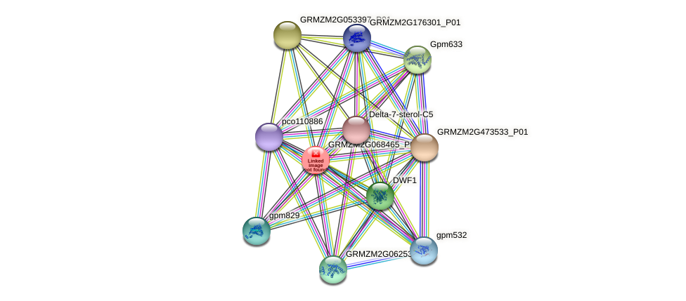 GRMZM2G068465_P02 protein (Zea mays) - STRING interaction network