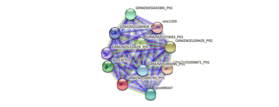 Zm.19820 protein (Zea mays) - STRING interaction network