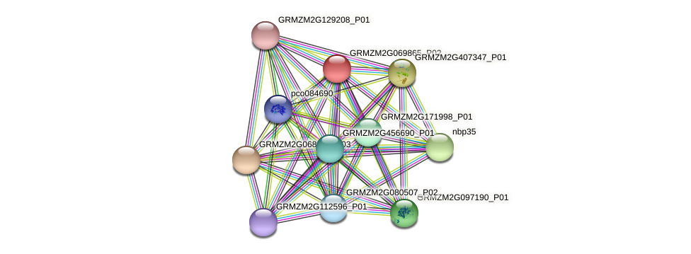 GRMZM2G069865_P02 protein (Zea mays) - STRING interaction network