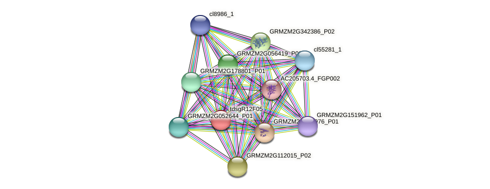 GRMZM2G070465_P01 protein (Zea mays) - STRING interaction network