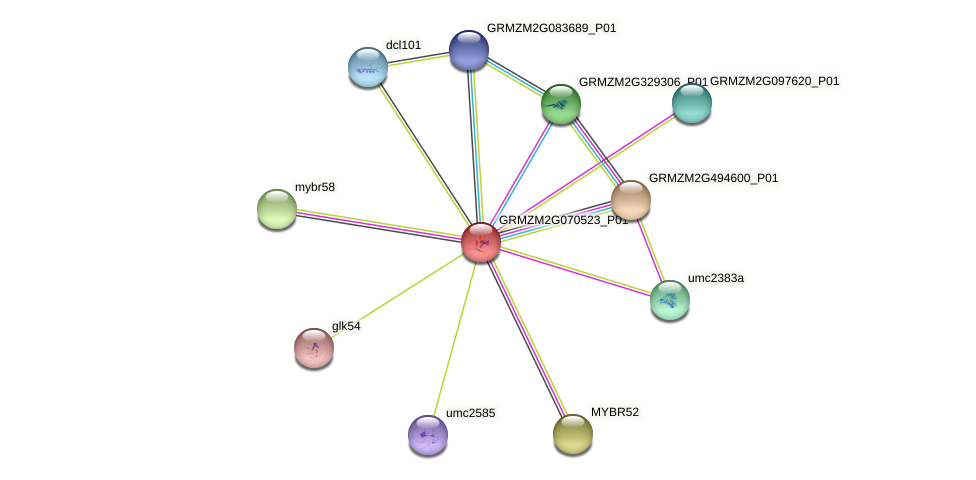MYB129 protein (Zea mays) - STRING interaction network