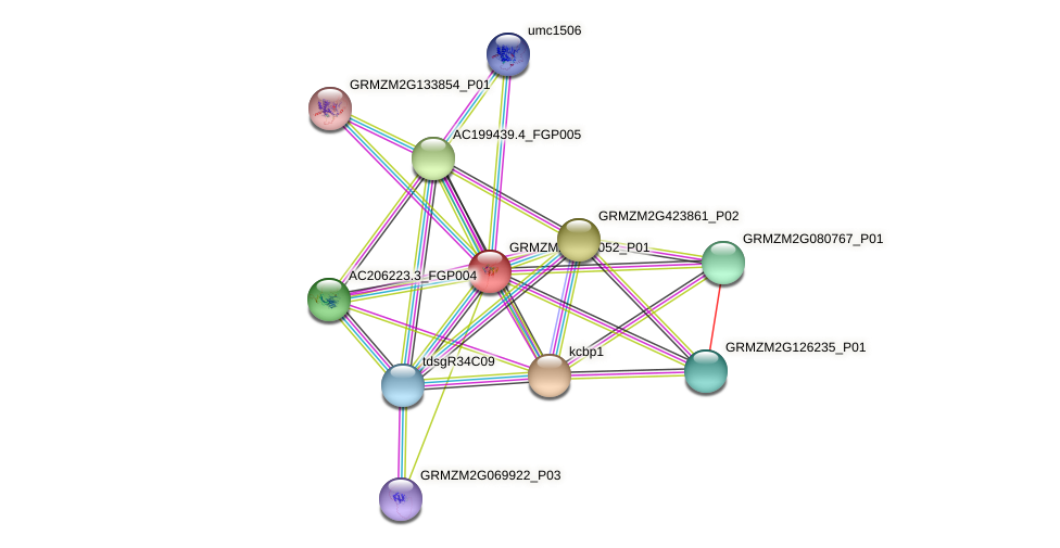 GRMZM2G072052_P01 protein (Zea mays) - STRING interaction network