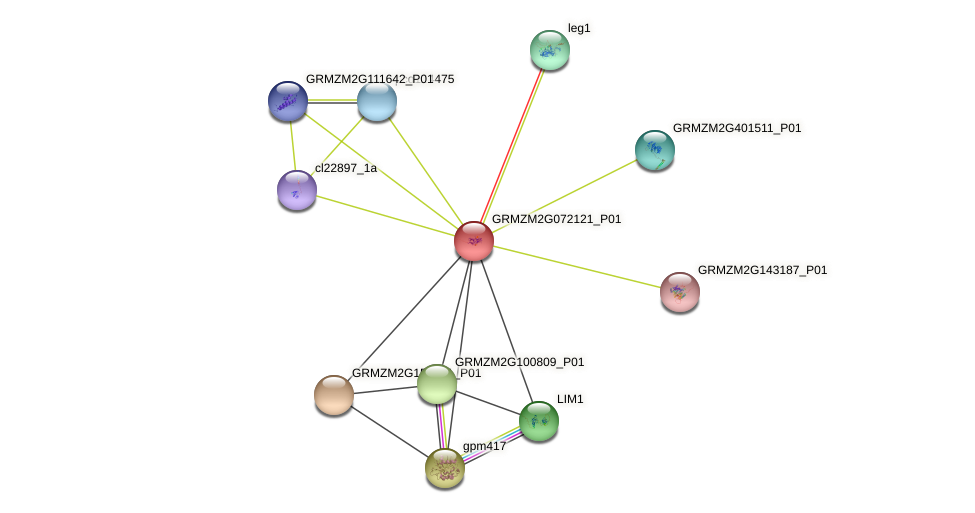 GRMZM2G072121_P01 protein (Zea mays) - STRING interaction network
