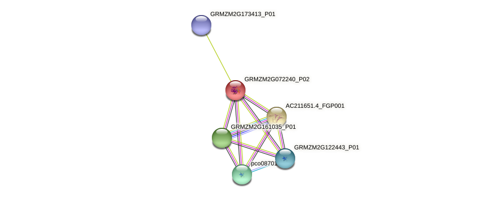 GRMZM2G072240_P02 protein (Zea mays) - STRING interaction network