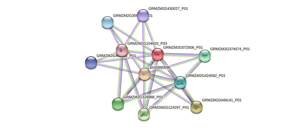 GRMZM2G072506_P01 protein (Zea mays) - STRING interaction network