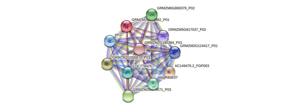 GRMZM2G072682_P01 protein (Zea mays) - STRING interaction network
