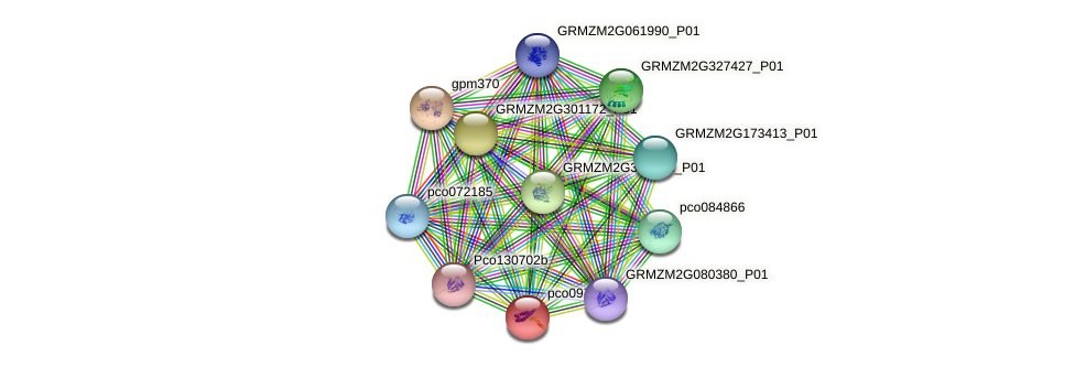 pco097248 protein (Zea mays) - STRING interaction network