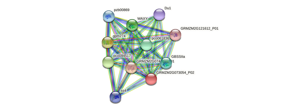 Zm.75898 protein (Zea mays) - STRING interaction network
